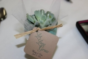 <h5>Wedding Favors</h5>