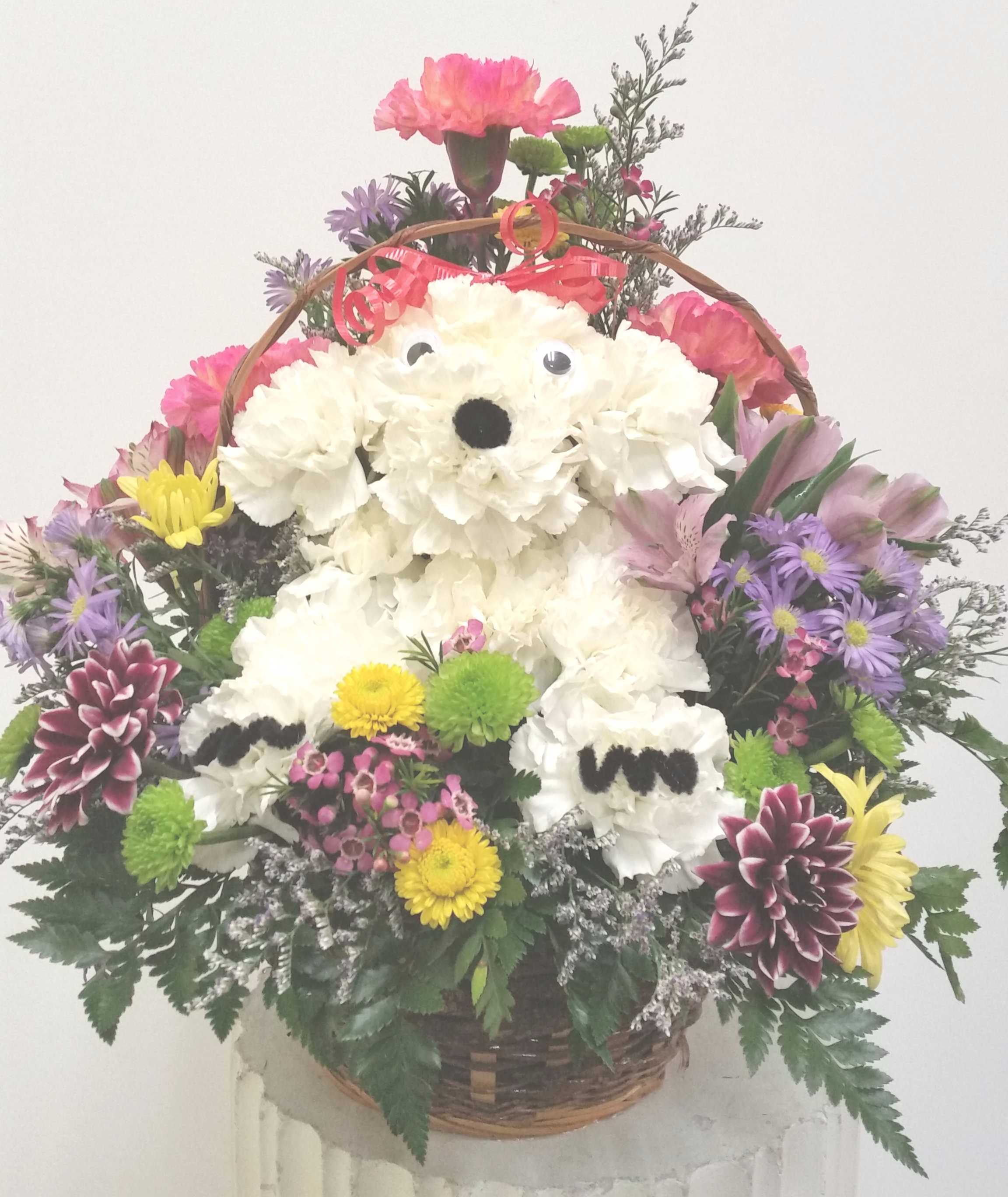 Puppy Love   Ed McCauslen\'s Florist